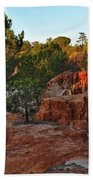 Pine Trees On Red Cliffs Beach Towel