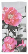 Pink Camellia. Shabby Chic Collection Beach Sheet