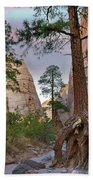 Ponderosa Pines In Slot Canyon Beach Sheet