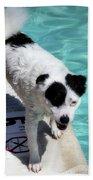 Pool Director Too Beach Towel