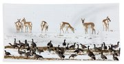 Pronghorn Antelope And Geese Beach Towel