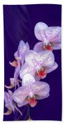 Purple Dream Beach Towel