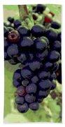 Purple Grape Bunches 19 Beach Towel