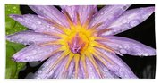 Purple Lotus Water Lily Beach Towel