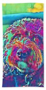Rainbow Pup Beach Sheet