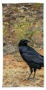 Raven, Grand Canyon Beach Towel by Dawn Richards