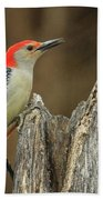 Red-belly At Stump Beach Towel