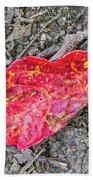 Red Leaf On Green's Hill Beach Towel