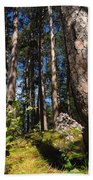 Red Pine Itasca Beach Towel