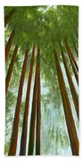 Redwood Forest Beach Towel