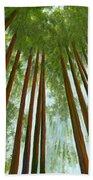 Redwood Forest Beach Sheet