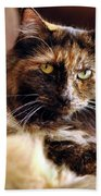 Regal Feline Beach Towel