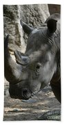 Rhinoceros With Two Horns Up Close And Personal Beach Towel