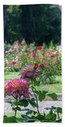 Rome Rose Garden Beach Towel
