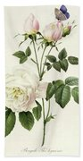 Rosa Bengale The Hymenes By Redoute Beach Sheet