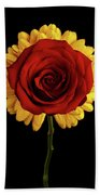 Rose On Yellow Flower Black Background Beach Towel by Sergey Taran