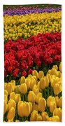 Row After Row After Row Of Tulips Beach Sheet