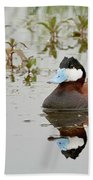 Ruddy Duck, Plumas County California Beach Sheet