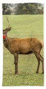 Rudolph The Red Nosed Reindeer Beach Towel