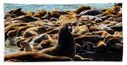 San Francisco's Pier 39 Walruses 2 Beach Towel