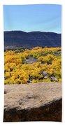 Sandstone Above Golden River Desert Landscape Beach Towel