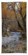 Serene Stream In Autumn Beach Towel
