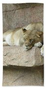 She Lion Beach Towel