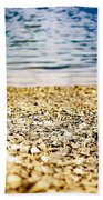 Shell Shocke Beach Towel