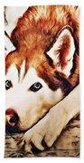 Siberian Huskies At Rest A22119 Beach Towel by Mas Art Studio