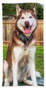 Siberian Husky Digital Art A030819 Beach Sheet