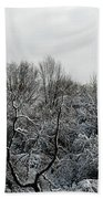 Snow Covered Trees Beach Towel by Rose Santuci-Sofranko
