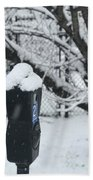 Snow Day Beach Towel by Lora J Wilson
