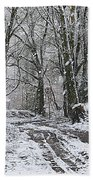 Snow In The Woods Beach Sheet
