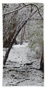 Snow In The Woods Beach Towel