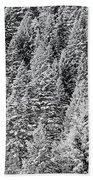 Snow On Evergreens Beach Towel