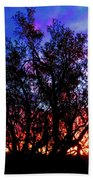 Sonoran Sunrise Ironwood Silhouette Beach Towel