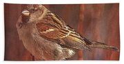 Sparrow In The Sunshine Beach Towel