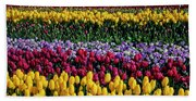 Spectacular Rows Of Colorful Tulips Beach Sheet