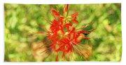 Spider Lily Pop Beach Sheet