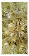 Dandelion Bloom Beach Sheet