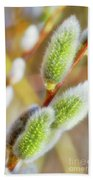 Spring Willow 4 Beach Towel