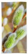 Spring Willow 4 Beach Sheet