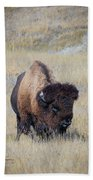 Standing Bull Beach Towel