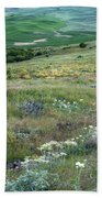 Steptoe Butte View 9276 Beach Towel