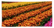 Stunning Rows Of Colorful Tulips Beach Sheet