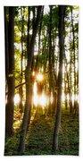 Sun Slivers Beach Sheet