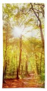 Sunbeams In The Forest Beach Towel