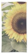 Sunflower Haze Beach Towel