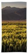 Sunset Over Wheat Beach Towel