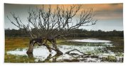 Swamp And Dead Tree Beach Towel